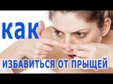 Quel parasites dans lorganisme de la personne les symptômes et le traitement arrivent