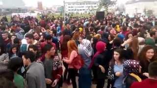 preview picture of video 'ORDU ÜNİVERSİTESİ HAMSİ ŞENLİĞİ :)'