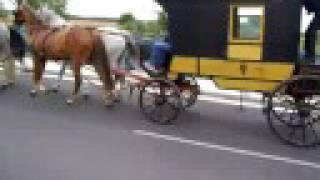 preview picture of video 'Postovni dostavnik mezi Laa a Hevlinem'