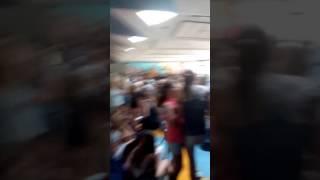Raayland Staakt Over Tropenrooster! 22 Juni 2017