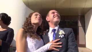 Самый счастливый день. Свадьба Эльдара и Юли