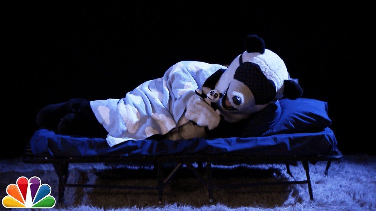 Audience Suggestion Box: Hashtag the Panda Hibernates, The British Bachelor thumbnail