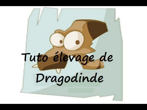 comment monter la fatigue d'une dragodinde