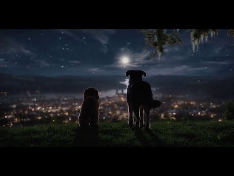 Леди и Бродяга (2019) — Трейлер |  Lady and the Tramp Official Trailer