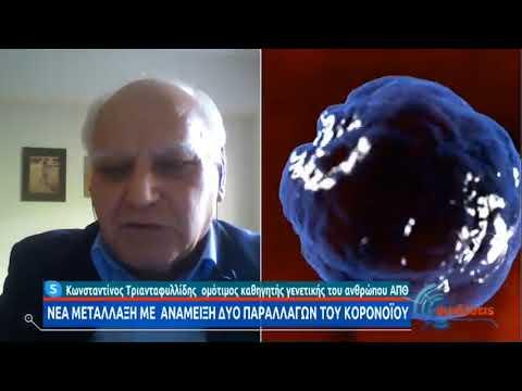 Τριανταφυλλίδης: Πιο μεταδοτικό το στέλεχος του ιού από την Καλιφόρνια ΕΡΤ 24/02/2024