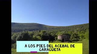 Video del alojamiento Casa Rural Acebarillo