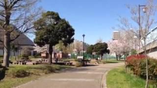 汐入公園のイメージ