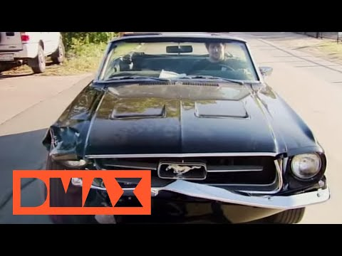 Download Fast N' Loud - Das Mustang-Drama HD Mp4 3GP Video and MP3