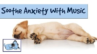 Calming Music to Soothe Your Dog's Anxiety and Barking