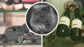 VLOD-archief: Mijn hobby is fijn! Kattenborstelen, miniatuur Kevers, en vlierbeswijn
