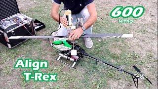 Elicottero RC | Align T-Rex 600 nitro | Prova accensione e volo dopo restauro completo!