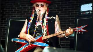 David Allan Coe - The Perfect Country Song?