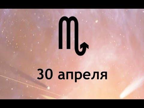 2008 гороскоп лев