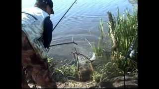 Снасти для рыбалки в удмуртии