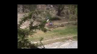 preview picture of video 'Contaminación en el Arroyo  Los San Pedros'