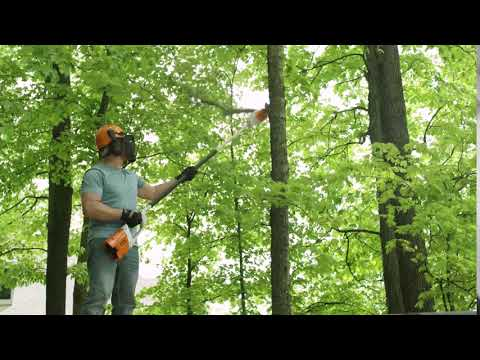 Stihl HTA 65 in Calmar, Iowa - Video 1