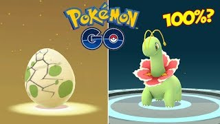 Download Youtube: EVOLUCIONANDO TODO LO QUE ECLOSIONO! ¡¿POKÉMON 100% IVS?! [Pokémon GO-davidpetit]