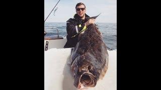 На что ловить палтуса в норвегии и описание