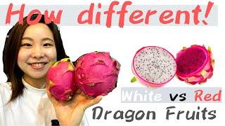 Dragon Fruits comparison!  Red vs White