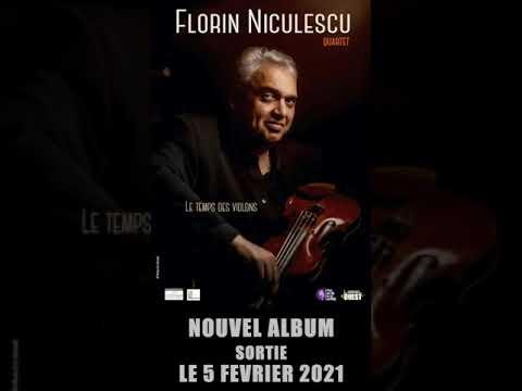 FLORIN NICULESCU -