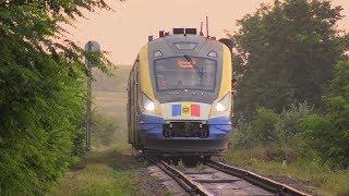 Дизель-поезд Д1М-004 на о.п. Сэрата Веке / D1M-004 DMU at Sarata Veche stop