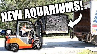 HUGE UPDATE! 10 NEW AQUARIUMS, DIY LIDS, DIY fish tank filter AND FEEDING THE FISH! Aquarium gallery