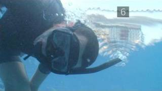 How To Snorkel Safely