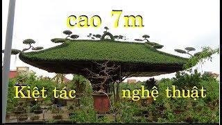 """Chắc phải dùng máy bay cẩu kiệt tác """"Mái đình làng quê""""từ 1 cây sanh Nam Điền già."""