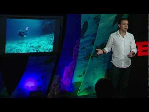 Enric Sala: Glimpses of a pristine ocean