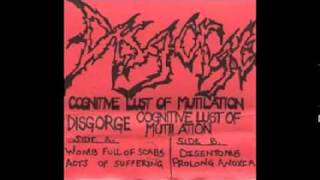 Disgorge (US) - Acts Of Suffering