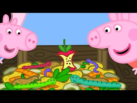 Peppa Pig English Episodes | Compost with Peppa Pig!  Peppa Pig Official