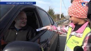 В Панковке дети призвали водителей быть аккуратнее за рулем
