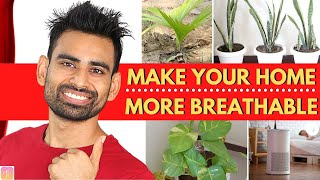How to Breathe Fresher Air Instantly in 3 Simple Steps (Air Pollution)