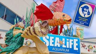 Legoland California Officially Re Opens The Sea Life Aquarium In Carlsbad