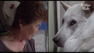 Grandmother Wanna Touch Her Dog, But The Dog Doesn't Allow Her To Do So (Part 2)   Kritter Klub