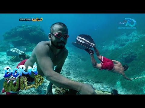 [GMA]  Born to be Wild: Spearfishers of Santander, Cebu