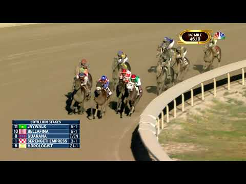 2019 COTILLION STAKES