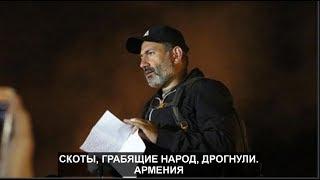 Скоты, грабящие народ, дрогнули  Армения