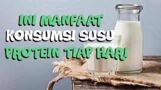 Ingin Konsumsi Susu Protein? Ini Waktu yang Tepat untuk Minum Susu Protein