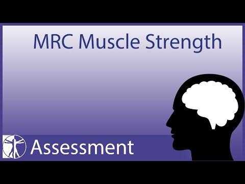 Comme vostonavlivat les muscles