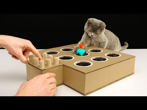 Make Your Cat a Cardboard Whack-A-Mole Game