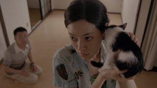 妹子从小就吸引猫,家里猫太多,她索性开始租猫,可并她不是为钱《租赁猫》