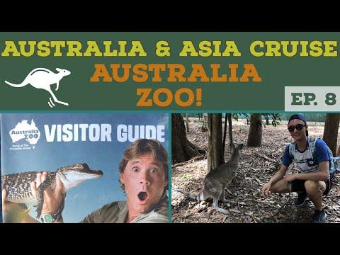 BRISBANE AUSTRALIA ZOO l Cruise to Australia l Cruise Vlog l Ep. 8