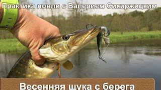 Рыбалка ранней весной на щуку с берега