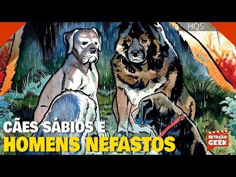 BEASTS OF BURDEN: CÃES SÁBIOS E HOMENS NEFASTOS | VALEU A ESPERA?
