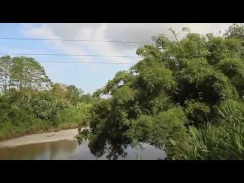 Video Souvenir Costa Rica