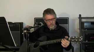 I Shall Be Released, Rainsong Black Ice Guitar