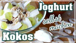 Veganer Joghurt selber machen | Kokos Joghurt herstellen | ohne Soja
