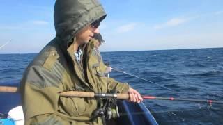 Как поймать морского черта