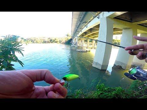 Andiamo a pesca di video